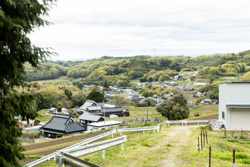 神戸の農村で野草納豆づくりを楽しむ会 – 季節の野草納豆・夏 –