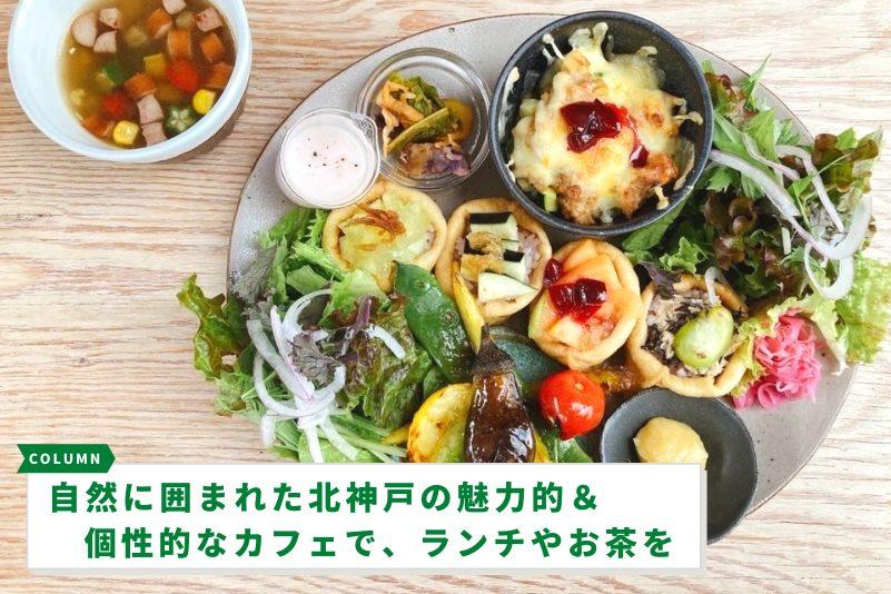 自然に囲まれた北神戸の魅力的&個性的なカフェで、ランチやお茶を