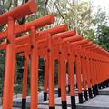 神户著名观光景点二日游 (Day 2)