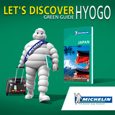 MICHELIN GREEN GUIDE